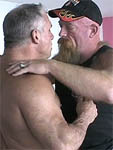 Masculine Bears free picture 1