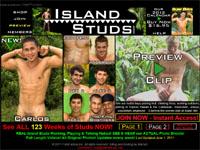 Island Studs
